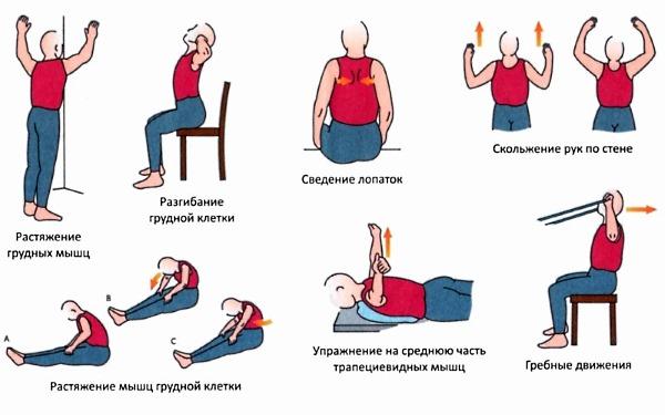 Несколько упражнений для укрепления спины и устранения в ней болей