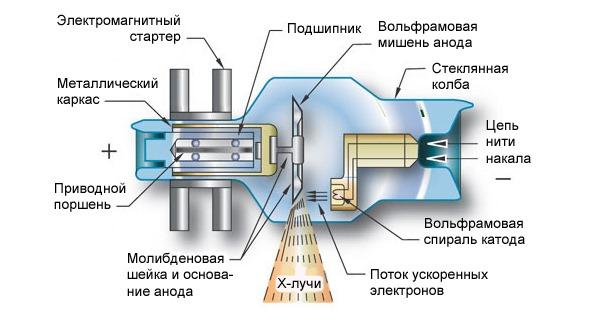 Строение рентгеноскопа и рентгеновской трубки