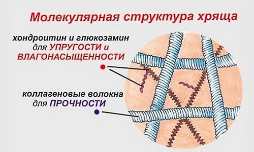 Хондропротекторы нацелены на восстановление хрящевой ткани