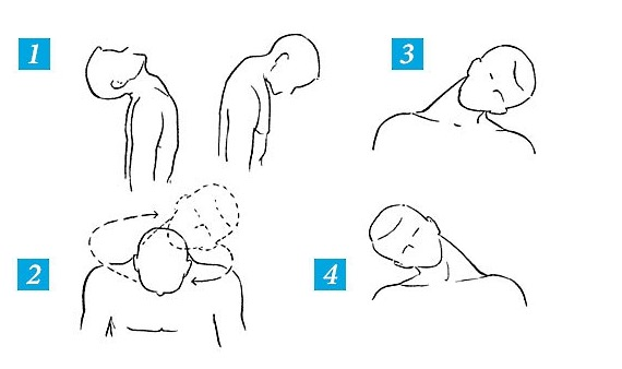 Обратите внимание, как правильно выполнять разминку для шеи перед основным комплексом упражнений