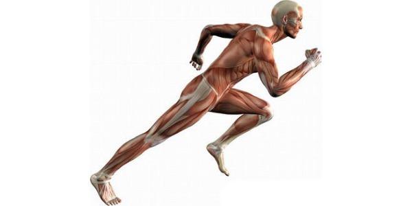 Ниже описаны полезные свойства бега