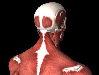 Учитывая характер боли и ее локализацию можно точно определить причину синдрома