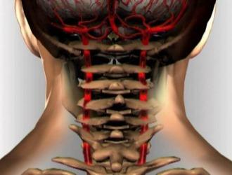 Болит шея и затылок: причины