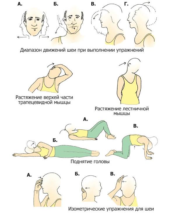 Несколько упражнений для профилактики патологий в шее