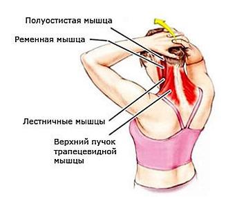 Самомассаж шеи помогает расслабить мышцы и вернуть им тонус