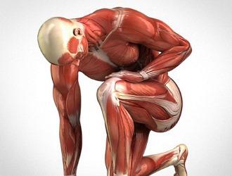 Одна из причин развития сколиоза - мышечная слабость